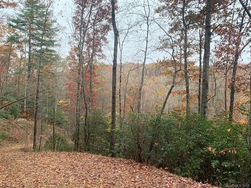 Photo of Lot 134 Green Hollow Lane, Brevard, NC 28712 (MLS # 3567472)