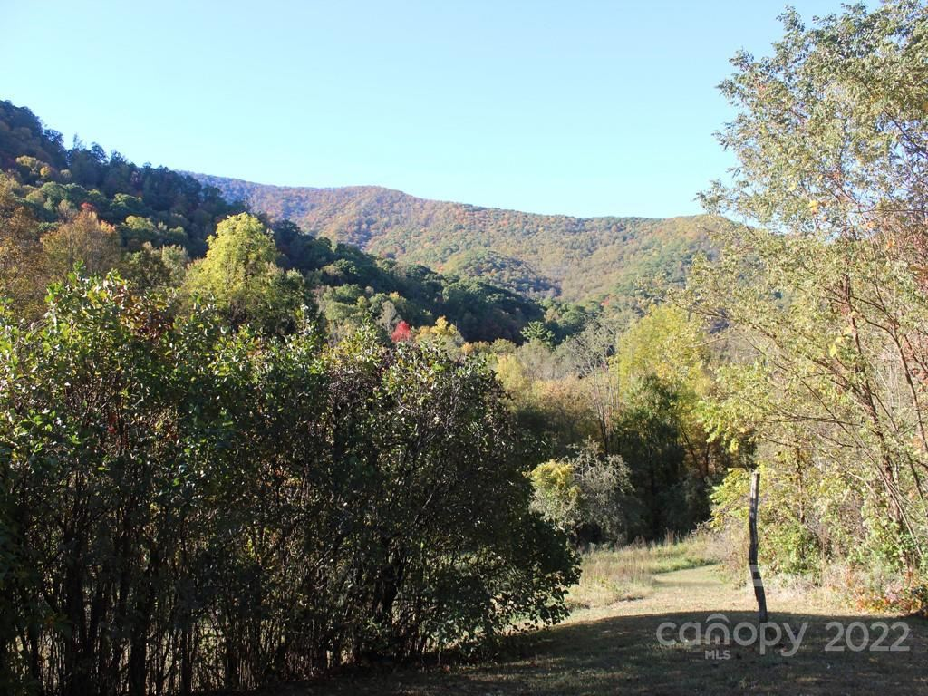 Photo of 536 Blackberry Inn Road, Weaverville, NC 28787 (MLS # 3558474)