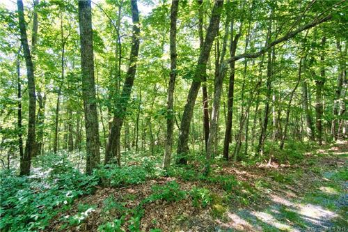 Photo of L-H206R Juniper Lane #H206R, Brevard, NC 28712 (MLS # 3536477)