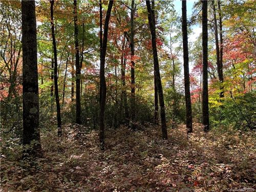 Photo of Lot 26 Ridge Trail Drive #26, Balsam Grove, NC 28708 (MLS # 3673481)