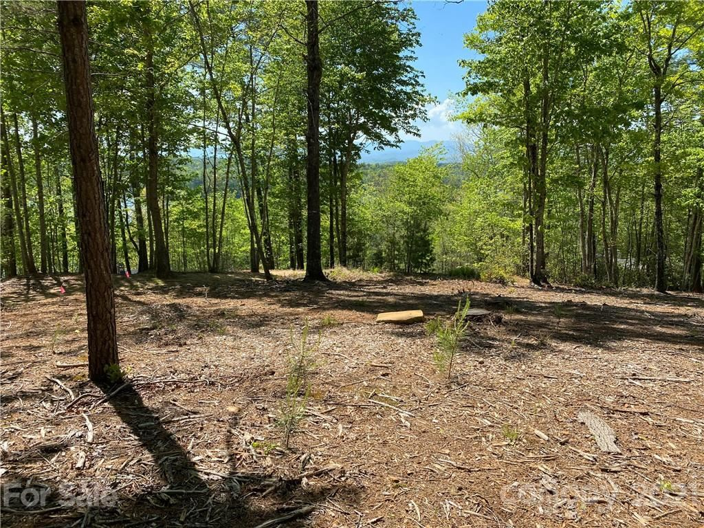 Photo of 2127 Catawba Trail #167, Nebo, NC 28761 (MLS # 3789497)