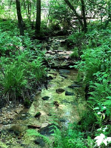 Photo of TBD Breckenridge Trail, Brevard, NC 28712 (MLS # 3751499)