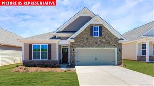 Photo of 3779 Summer Haven Drive #106, Sherrills Ford, NC 28673 (MLS # 3509500)