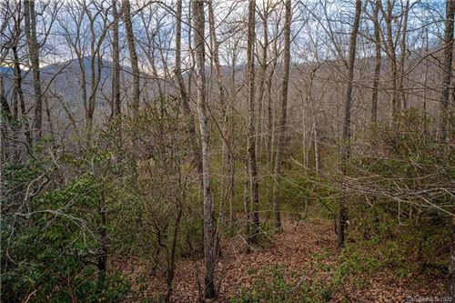 Photo of 8 Wood Lily Trail #14, Arden, NC 28704-0007 (MLS # 3694504)