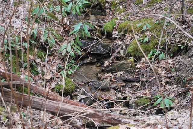 Photo of 14 Bear Rock Loop Road, Hendersonville, NC 28739 (MLS # 3386507)