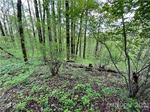 Photo of OFF Pine Mountain Drive, Brevard, NC 28712 (MLS # 3737520)