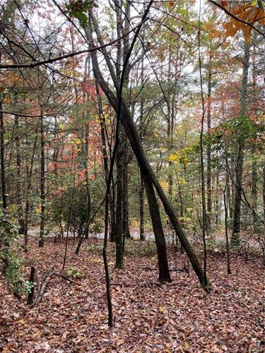 Photo of 5A Dogwood Circle, Pisgah Forest, NC 28768 (MLS # 3676521)