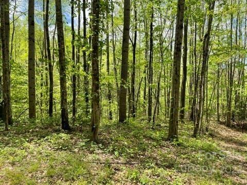 Photo of 1362 Preserve Road #4, Sylva, NC 28779 (MLS # 3737526)