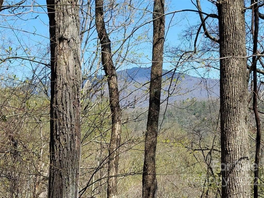 Photo of 00 Little Fork Trail #A-32, A-33, Bakersville, NC 28705 (MLS # 3733527)