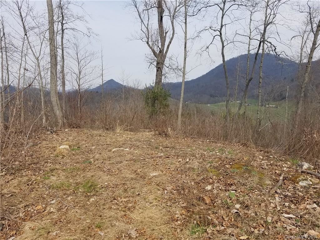 Photo of 3091 Hyder Mountain Road, Clyde, NC 28721 (MLS # 3542537)
