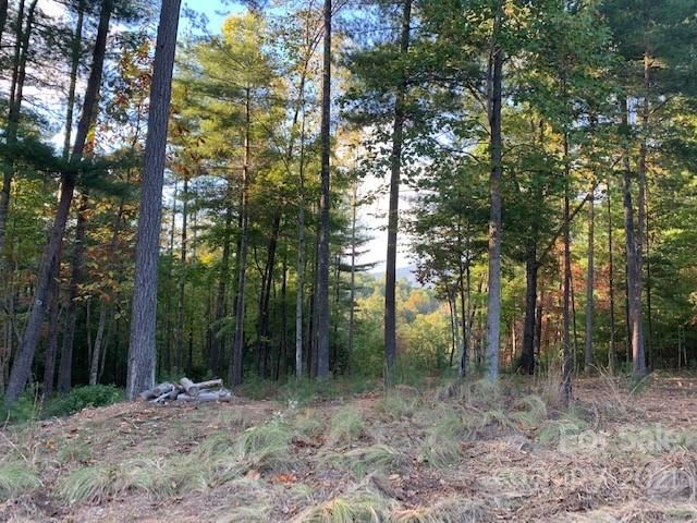Photo of 00 Sycamore Drive #263, Nebo, NC 28761 (MLS # 3605537)