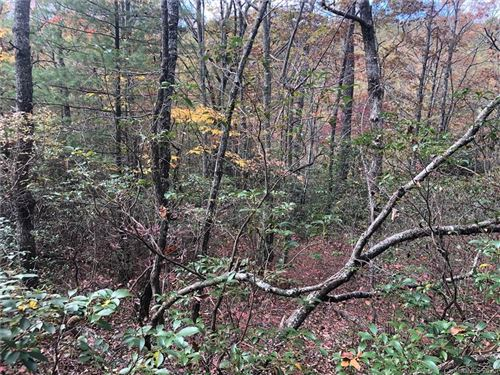 Photo of Lot 5 Oriole Road #5, Brevard, NC 28712 (MLS # 3676539)