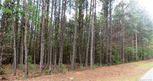 Photo of 2911 E Paradise Harbor Drive #231, Connelly Springs, NC 28612 (MLS # 3664541)
