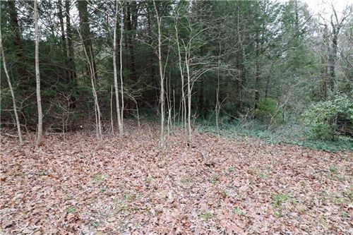 Photo of 0 Hogback Mountain Road, Tryon, NC 28782 (MLS # 3692542)