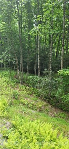 Photo of 9999 Whitetail Trail #T133A, Rosman, NC 28772 (MLS # 3761547)