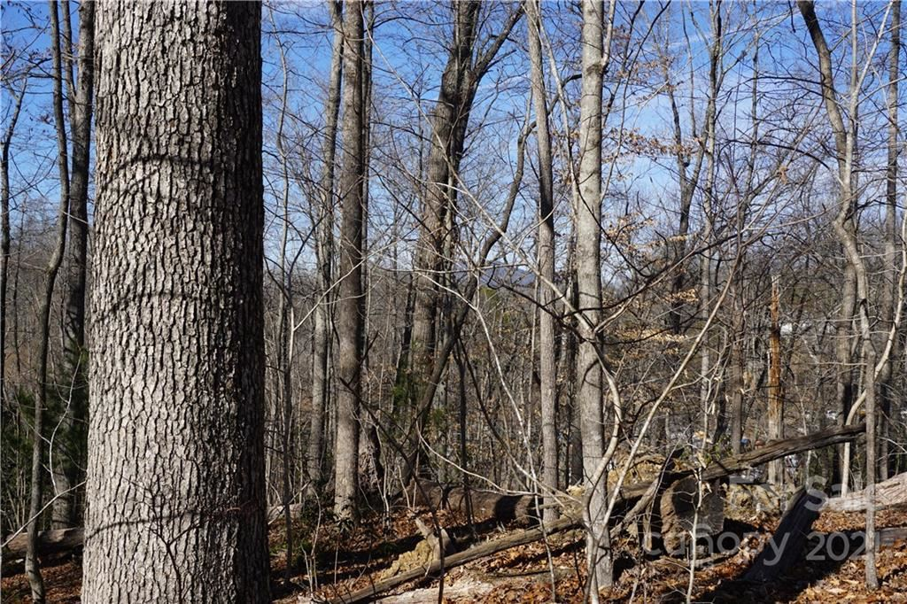Photo of 118 Song Sparrow Drive #13, Marion, NC 28752 (MLS # 3698560)