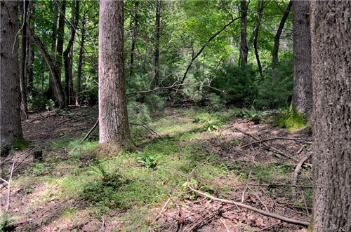 Photo of Lot #12A Lurewoods Manor Drive, Lake Lure, NC 28746 (MLS # 3651569)