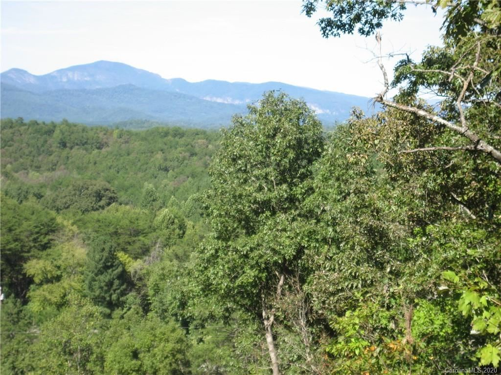 Photo of 000 Silver Creek Road, Mill Spring, NC 28756 (MLS # 3678577)