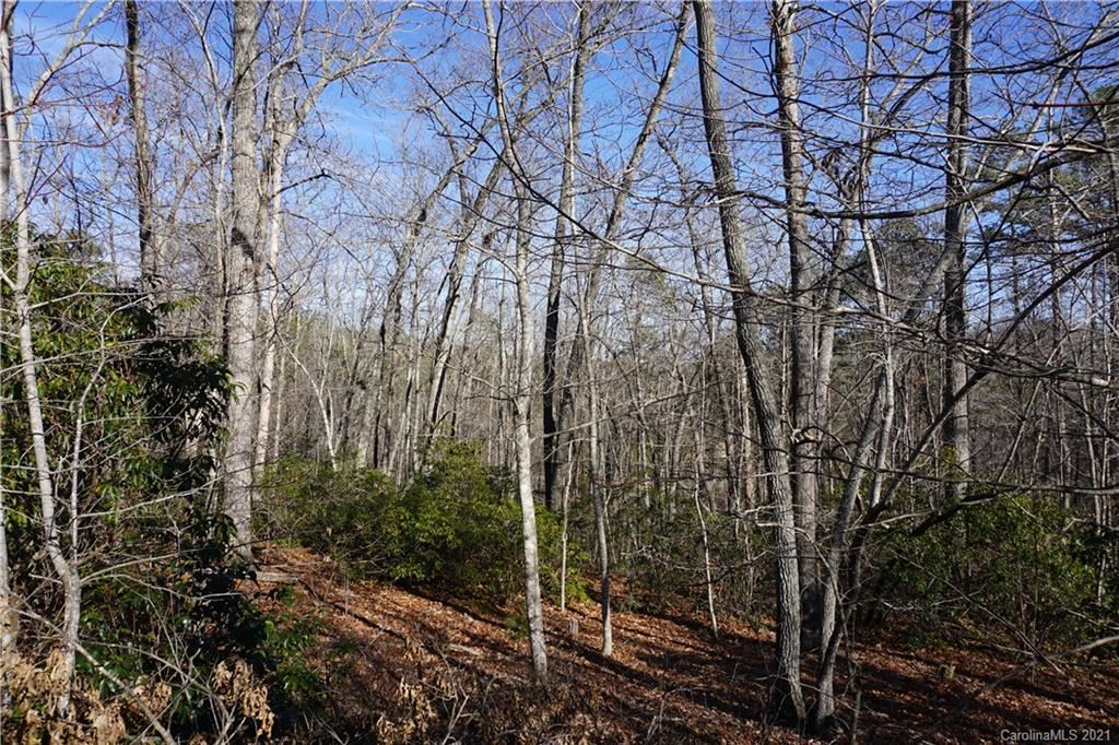 Photo of 306 Ravenswood Drive #102, Marion, NC 28752 (MLS # 3698578)