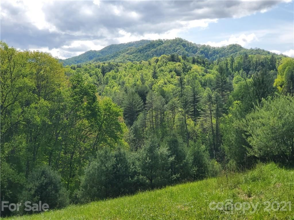 Photo of 198 North Bend Drive, Green Mountain, NC 28740 (MLS # 3643588)