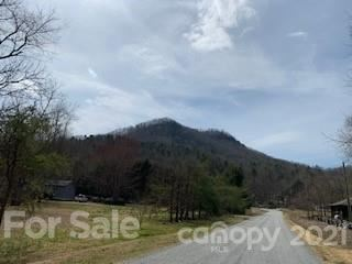 Photo of 99999 ANGELWOOD Lane #SMALLER TRACTS AVAIL, Edneyville, NC 28792 (MLS # 3731594)