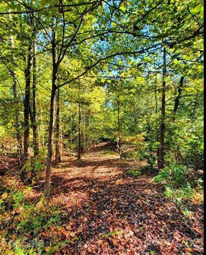 Photo of 62 Bramblewood Drive, Rutherfordton, NC 28139 (MLS # 3797597)