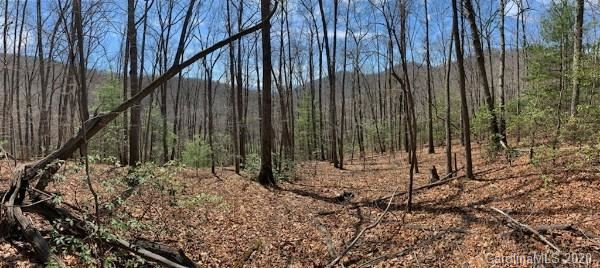 Photo of 27 Pathfinder Trail, Asheville, NC 28806 (MLS # 3607614)