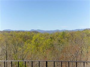 Photo of 483 See Off Mountain Road, Brevard, NC 28712 (MLS # 3567621)