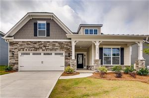 Photo of 1119 Waterlily Drive #028, Indian Land, SC 29707 (MLS # 3475623)
