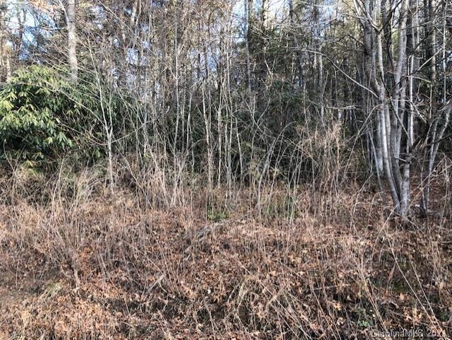 Photo of 0 Davenport Road, Spruce Pine, NC 28777 (MLS # 3698631)