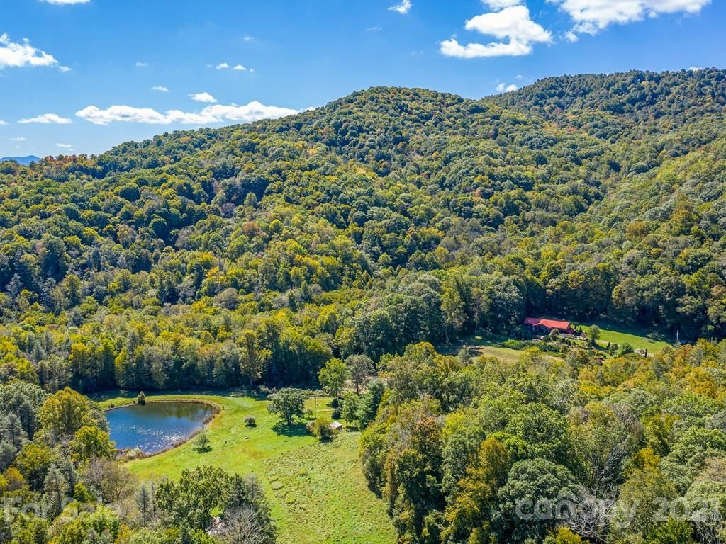 Photo of 4534 Poplar Creek Road, Green Mountain, NC 28740 (MLS # 3670636)