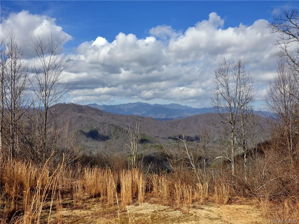 Photo of 9999 Major Mountain Road, Black Mountain, NC 28711 (MLS # 3591640)