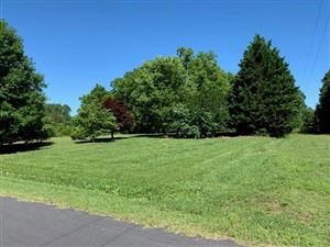 Photo of 248 Henry Rose Drive, Taylorsville, NC 28681 (MLS # 3518646)