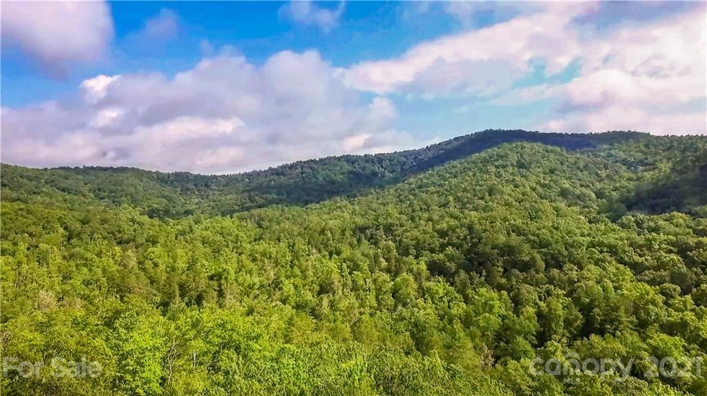 Photo of 378 Sutton Creek Road, Pisgah Forest, NC 28768 (MLS # 3650661)