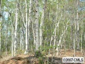 Photo of 0 Shannon Drive, Salisbury, NC 28144 (MLS # 3624666)