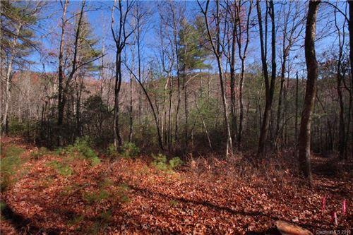 Photo of 3B Dragon Tail Trail, Brevard, NC 28712 (MLS # 3233667)