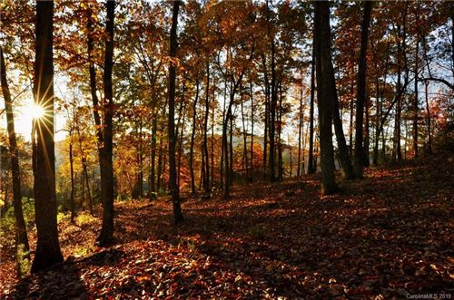 Photo of 565 Walnut Valley Parkway, Arden, NC 28704 (MLS # 3564668)