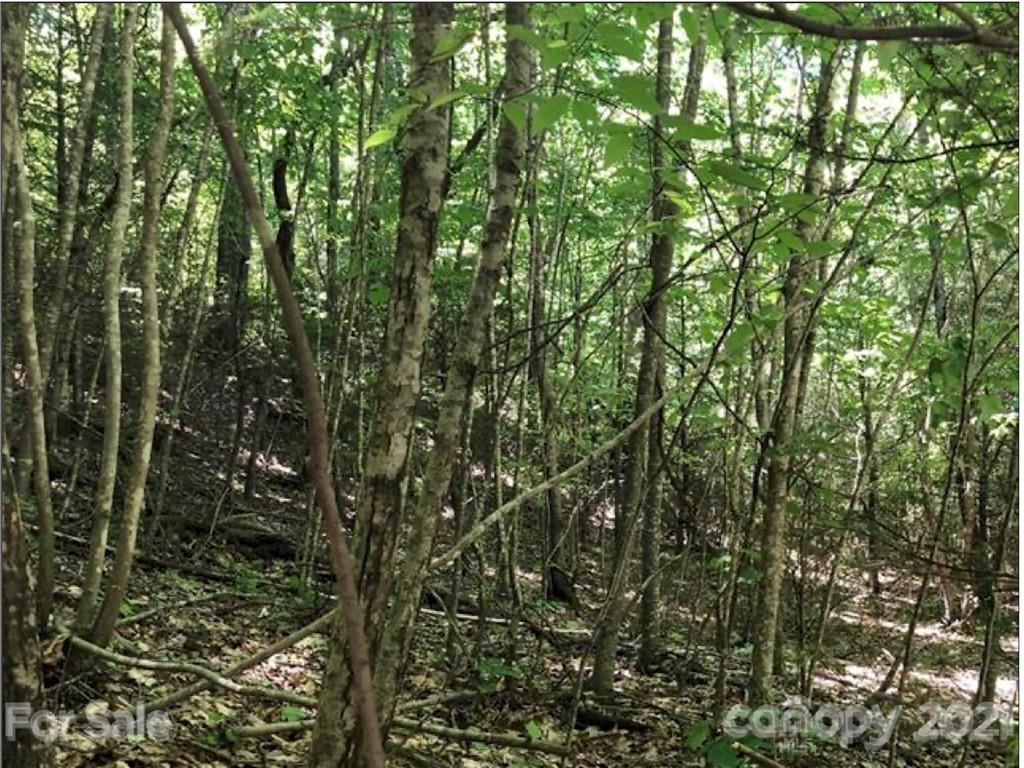 Photo of LOT 57 Clear Spring Trail #57, Nebo, NC 28761 (MLS # 3736671)