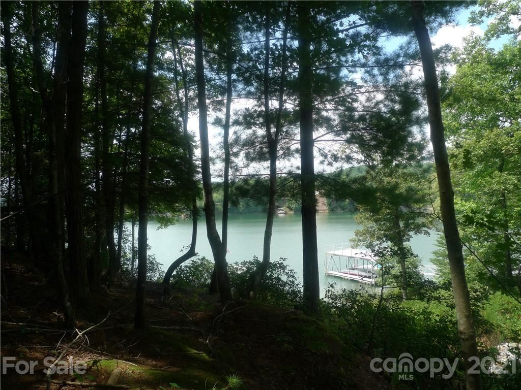Photo of 436 Sunset Point Parkway #39, Nebo, NC 28761 (MLS # 3734678)