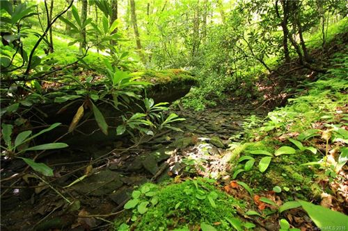 Photo of Lot 20C&20D Half Moon Lane, Brevard, NC 28712 (MLS # 3188685)