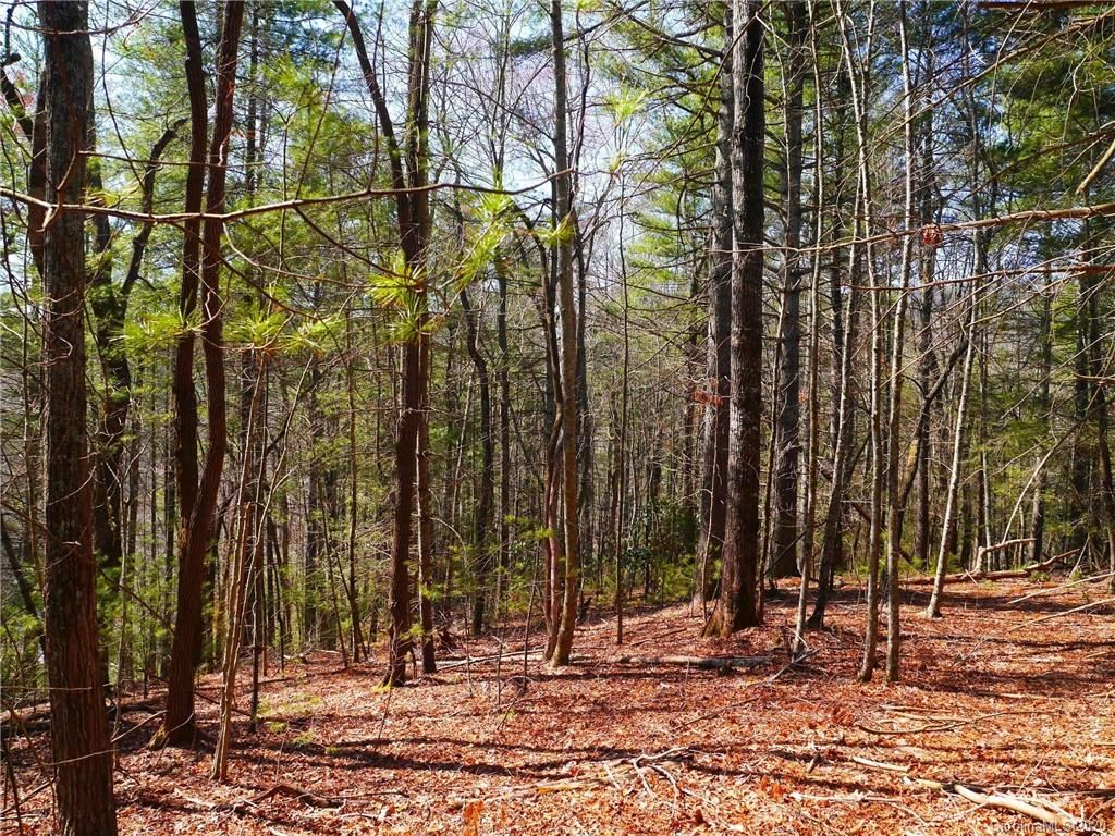 Photo of tbd Valley Oak Road #Tract 2, 7.02 +/- Ac, Hendersonville, NC 28739 (MLS # 3626686)