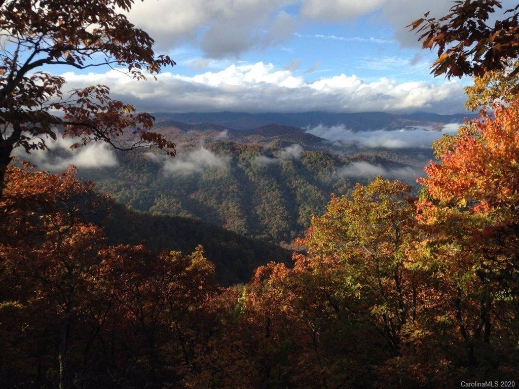 Photo of 2238 Creston Drive, Black Mountain, NC 28711-6040 (MLS # 3621692)