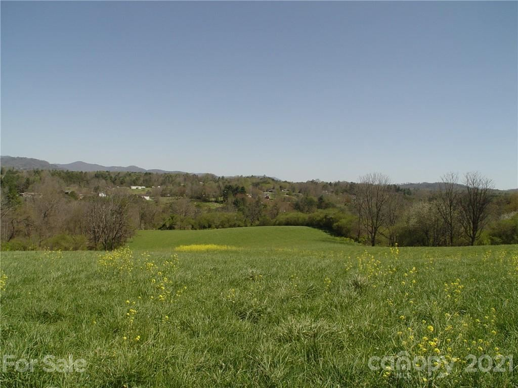 Photo of 1293 Bear Creek Road, Leicester, NC 28748-6345 (MLS # 3734699)