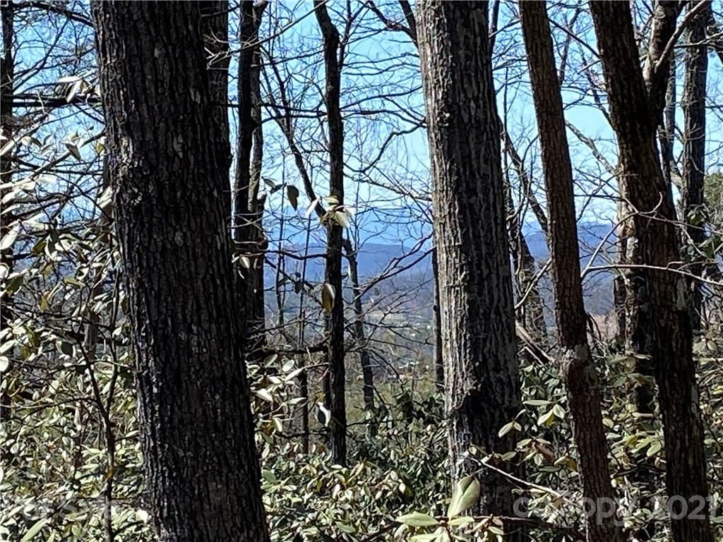 Photo of 2196 Lamb Mountain Road, Hendersonville, NC 28792 (MLS # 3724701)