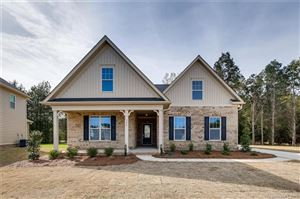 Photo of 326 Willow Tree Drive #142, Rock Hill, SC 29732 (MLS # 3361702)