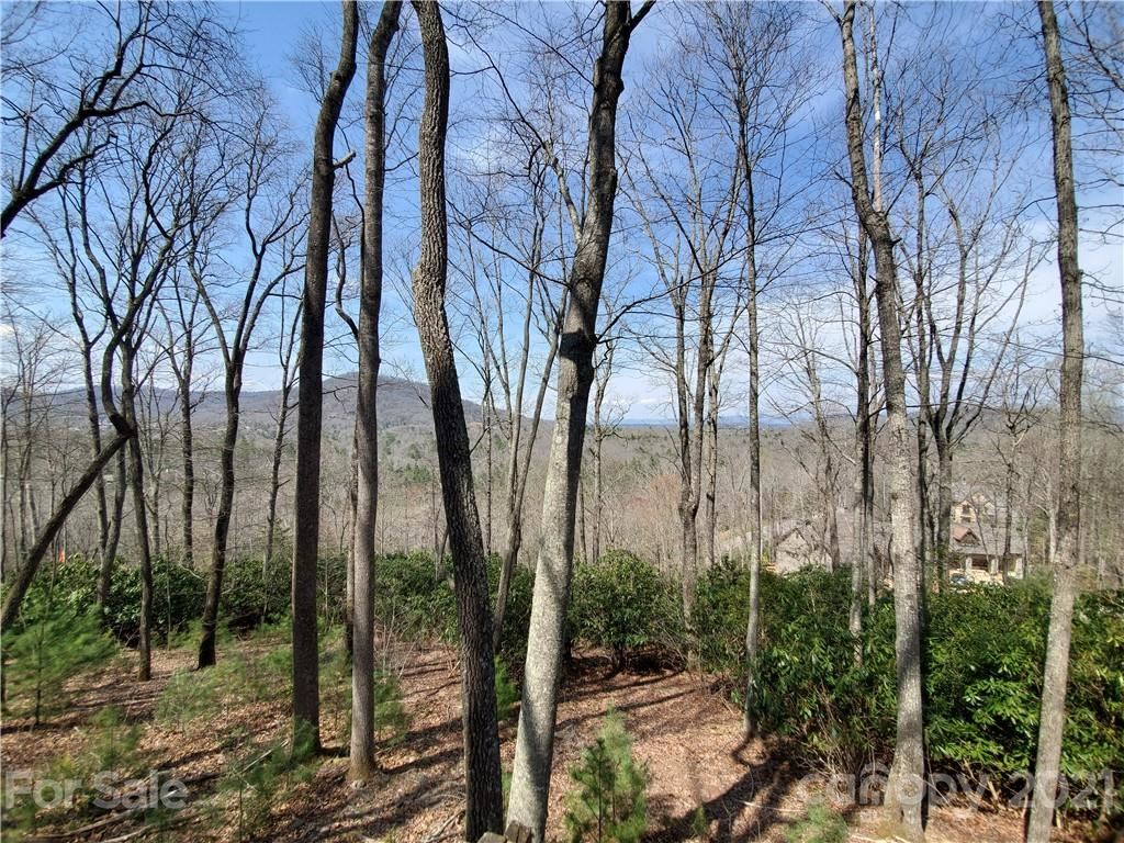 Photo of 211 Secluded Hills Lane #012, Arden, NC 28704 (MLS # 3726708)