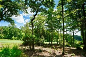 Photo of 1923 White Tree Trail, Arden, NC 28704 (MLS # 3416711)