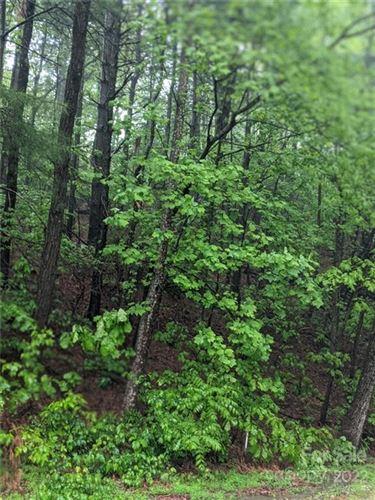 Photo of 0 Melrose Mountain Road #513, Tryon, NC 28782 (MLS # 3735712)
