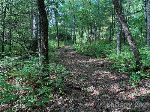 Photo of TBD Green Hollow Lane, Brevard, NC 28712 (MLS # 3791712)
