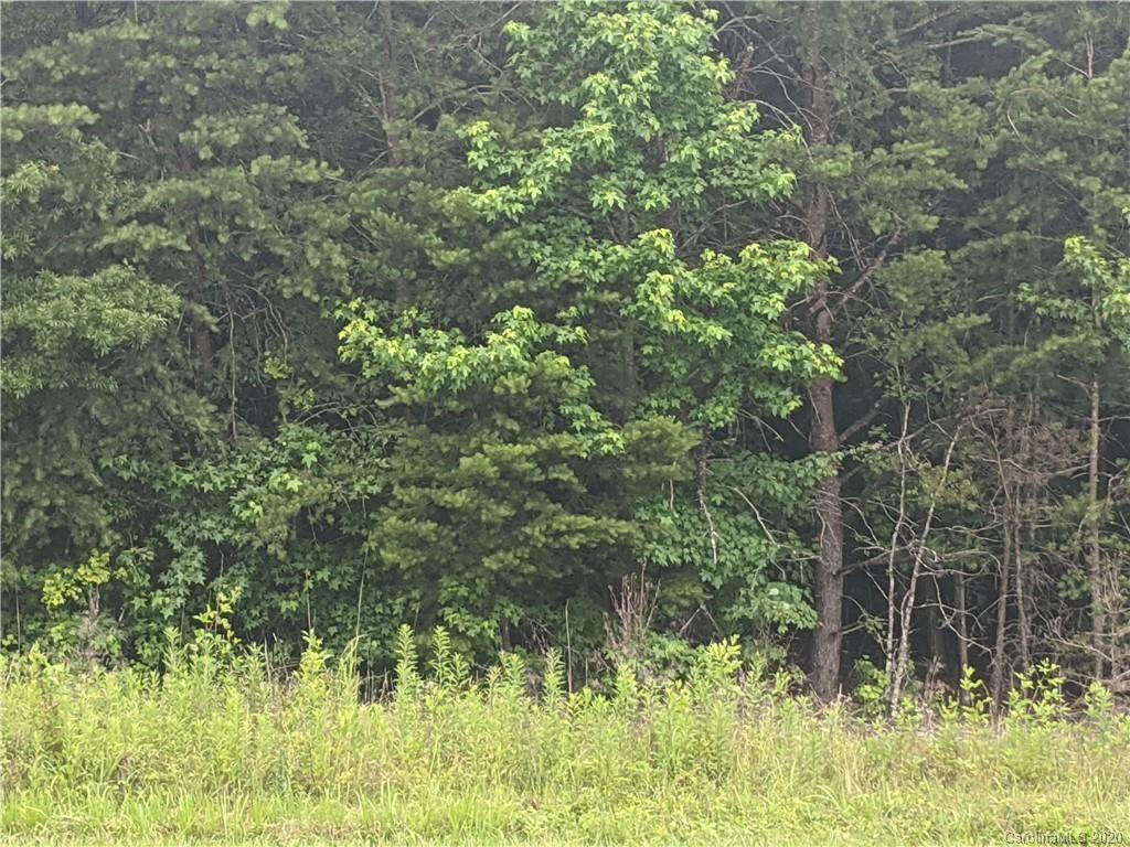 Photo of 0 Fox Mountain Road E, Columbus, NC 28722 (MLS # 3633712)
